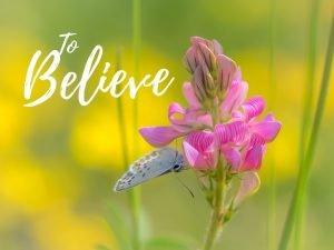 """To Believe"""